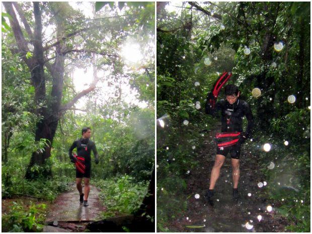 Hutan pulau Rubiah